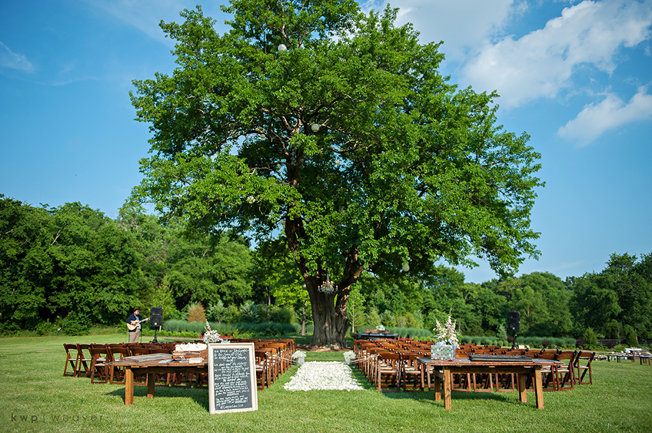 Arrington Vineyards wedding