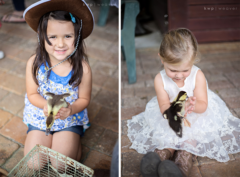 petting farm birthday party