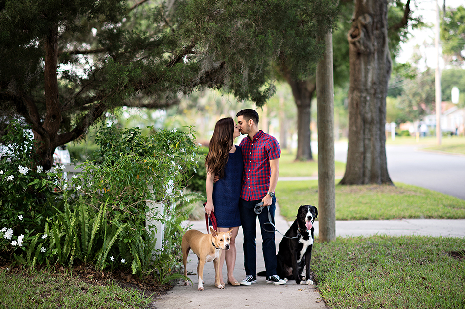 dog family photos