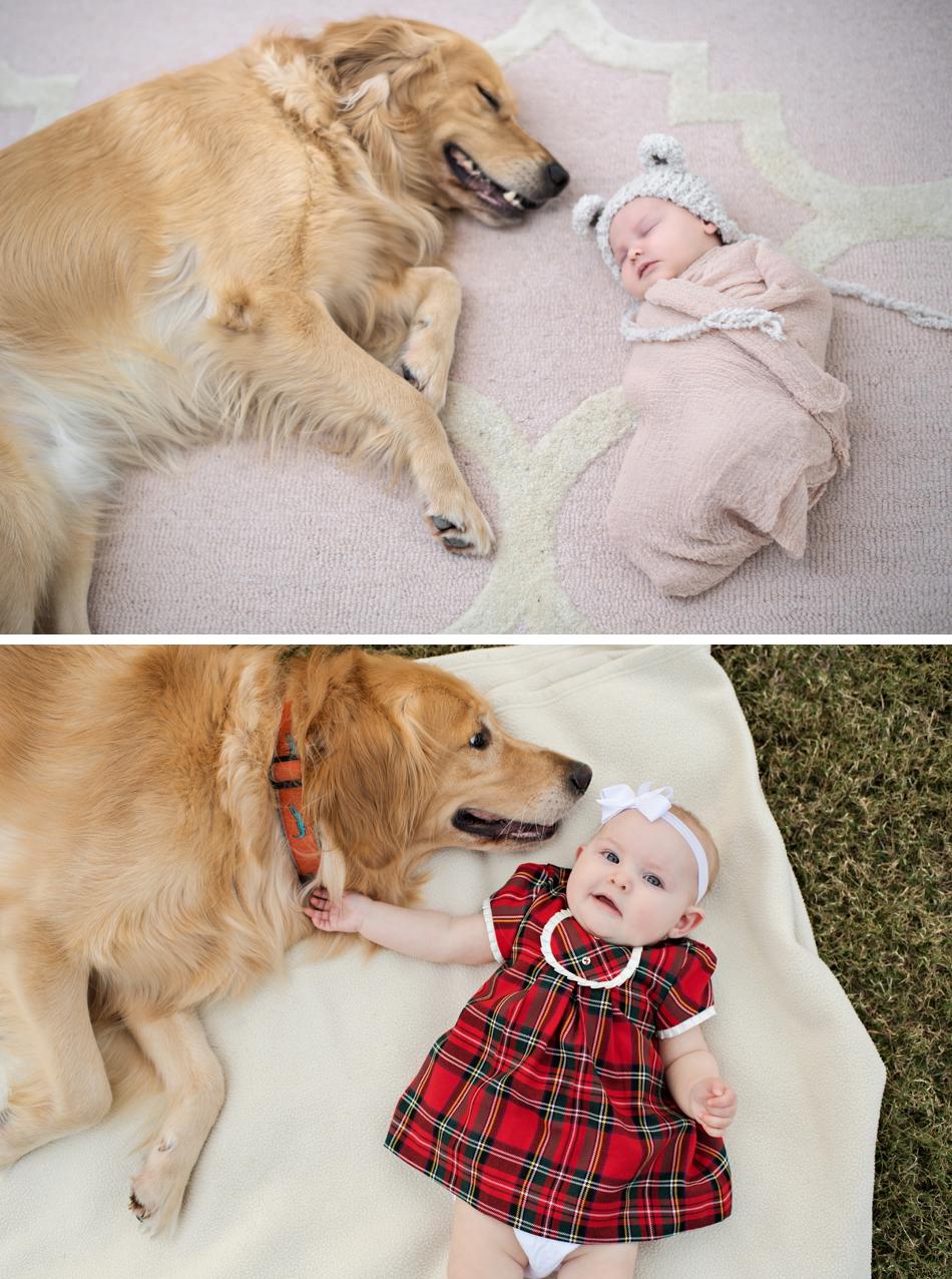 Newborn and 6 month baby photos
