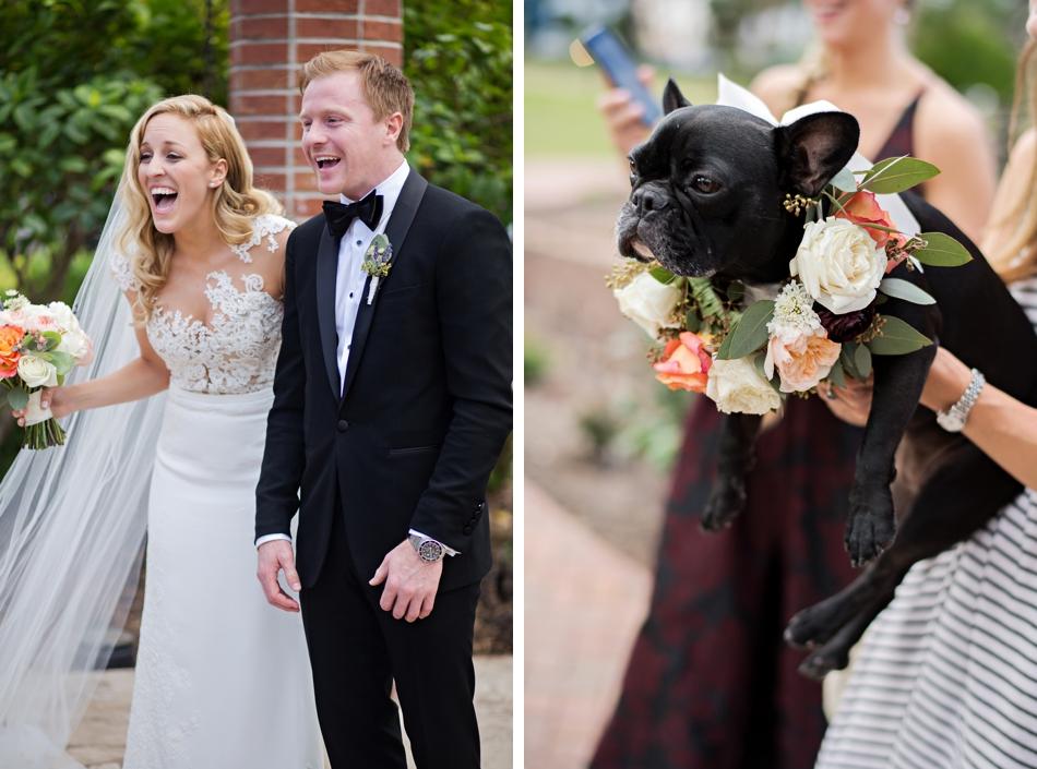 flower collar for dog wedding