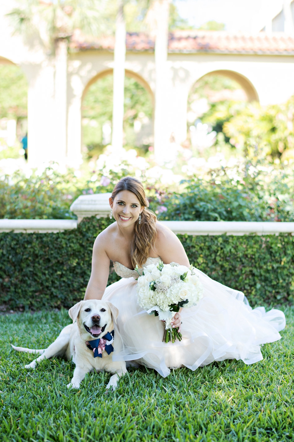 I love dogs and weddings